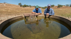 20150416-NRCS-LSC-0443 (USDAgov) Tags: california ranch ca water solar pond cattle dry well drought trough automated usda photovoltaic oneals departmentofagriculture usdepartmentofagriculture stockpond wqip