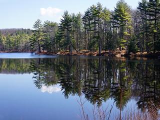 Harvard Pond, Western Massachusetts