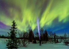 Waiting for Aurora (Pume Tanarat) Tags: light night star russia north aurora murmansk