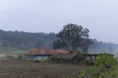 Rural farm (wietsej) Tags: india rural landscape farm sony tribal hills chhattisgarh a6000 maikal sel1670z sonycarlzeissvariotessart1670mmf4zaoss