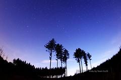 (Px4u by Team Cu29) Tags: nacht himmel wolken stern wald baum fichte sterne twighlight abenddmmerung fischauge