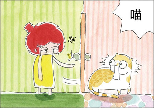家裡來了一隻貓 貓咪也會冷戰