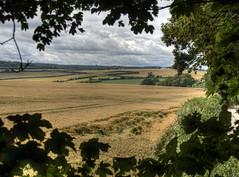 Landscape near Cawley in Hampshire (neilalderney123) Tags: landscape olympus hampshire winchester omd crawley 2016neilhoward