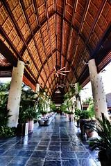 Santuario (Rex Montalban Photography) Tags: rex montalban photography mexico vidanta santuario nuevovallarta rexmontalbanphotography bar lounge entertainment show grandmayan