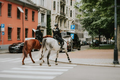 Norway (christilou1) Tags: sony a7rii zeiss 5025 zm oslo norway riders police mounted ladies