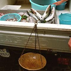 Pescivendolo ambulante (pietrogrotta (B&W analog photography)) Tags: kodak400 pesci pescivendolo ambulante cefalo cefali seppia seppie gamberi gamberoni apecar stadera piaggio spigola