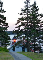 A light through the trees (Tone2b) Tags: d600 nikon 2470 evening twilight acadia maine water harbor