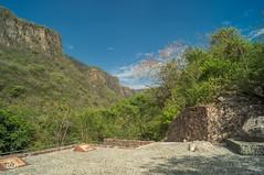 CUAAD (Braulio Gmez) Tags: barrancadehuentitn biodiversidad caminoamascuala canyon canyonhuentitan faunayflora floresyplantas guadalajara jalisco mountainrange naturaleza sierra senderismo paisaje barrancadehuentitn barranca huentitn ixtlahuacandelro mxico guardianesdelabarranca