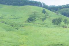 15Tonomine Highland (anglo10) Tags:   japan field