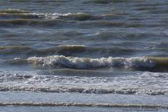 Belgian coast (Natali Antonovich) Tags: belgiancoast wenduine parallels nature water light sea northsea seashore seasideresort seaboard seaside