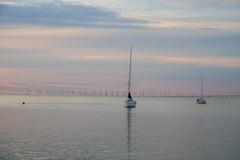 Sailingboats at Sunset