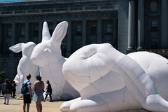 rabbits-068 (Yvonne Rathbone) Tags: technical 1855mmf3556gvr d5500 nikkor nikon sanfrancisco balloons citylife civiccenter exhibit giant inflatable publicart rabbit rabbits white