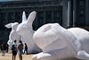 rabbits-068 (Yvonne Rathbone) Tags: technical 1855mmf3556gvr d5500 nikkor nikon sanfrancisco balloons citylife civiccenter exhibit giant inflatable publicart rabbit rabbits white