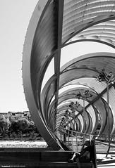 Madrid Rio (Zamana Underground) Tags: madrid street rio metal puente arquitectura ciudad momento blanconegro