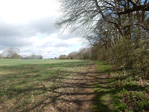 On North Downs Way, 11th April, 2015-007