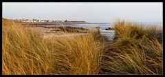 MOGUERIEC DUNES (Photo.Emotion) Tags: sea mer seascape beach nature landscape tide bretagne breizh paysage plage marre