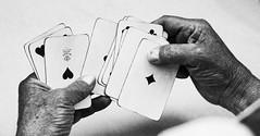 Un giocatore di carte dovrebbe sapere che una volta che il denaro sta nel piatto, cessa di essere suo.  Jonathan Swift (Margcoss) Tags: hands mani cartedagioco