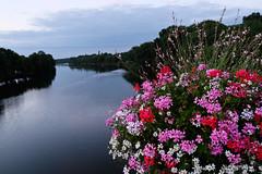 DSCF2485 (kuzdra) Tags: couchedesoleil soir evening sunset sarthe riviere river fleurs flowers