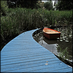 la voie bleue (d.cairn) Tags: orange art festival square eau jardin vert rivire bleu uga amiens sheena barque seeks carre hortillonnage