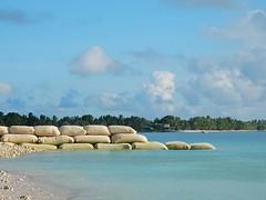 Reclaiming Coast (mikecogh) Tags: funafuti reclaiming landreclamation regeneration sandbags groyne aqua coast lagoon