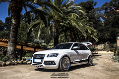 Project Audi Q5 x DSLC 2k16 (AmorettyWorks) Tags: audi q5 rotiform dslc performance amoretty works wheels wheel whores forged roti ccv brushed chrome air suspension slammed stance dapper clea fresh white hotel santa marta bagged hp drivetech accuair sq5 low lowlife exhaust suv fitment bilstein photography photo