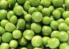 13-IMG_3376 (hemingwayfoto) Tags: ackerbau biologisch erbse frisch geffnet gemse grn hlsenfrucht landwirtschaft lebensmittel markt nahrung nahrungsmittel natur pflanzen pflanzlich produkt roh ss vegetarisch
