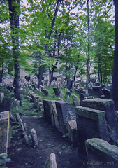 Old Jewish Cemetery in Josefov (Greatest Paka Photography) Tags: cemetery oldest gravestone jewish burial death prague josefov community layer jewishquarter elevated history space czechrepublic