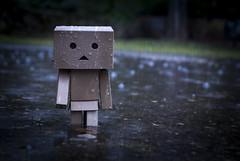 Raining (acetilsaliclico) Tags: toy danbo yotsuba rain raining