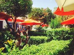 Nydelig sommerdag i Marbella i dag, #kanfortggodt! #rullendeflott (anMarton) Tags: instagramapp square squareformat iphoneography uploaded:by=instagram rise