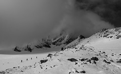 Hidden Behemoth (gregorio_rossi) Tags: hohe tauern mountains grossglockner grosglockner glacier montagna hiking austria snow ice alti tauri alps alpi