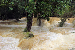 Tad Sai Waterfall near Luang Prabang, Laos (nikname) Tags: tadsaiwaterfall floods trees luangprabang laos