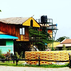 #roadtrip #friends #masingagudi #ooty #india #incredibleindia #resort #Hut #nature #natural #colors #birds #wildlife #photo #photography #photographer #canon #canon700d #eos700d #serene (tarungupta5) Tags: vacation photographer india photography roadtrip canon canon700d eos700d friends resort hut wildlife birds nature naturephotographer