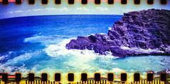 Magic Island View (Justin Ornellas) Tags: ocean blue justin girls cliff sexy art film water yellow analog darkroom hawaii jump lomo lca waikiki oahu dive olympus retro bikini  hawaiian xa hawaiikai sandys olympusxa sprocket makapuu sprocketrocket ornellas ornellaswouldgo