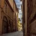 Lucca Narrow Street-1