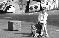 The first warm day in Den Bosch . (Franc Le Blanc .) Tags: street people dog art girl sunglasses lumix sitting candid panasonic sit streetphoto seated denbosch