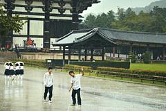 ~ Todaiji Temple 2 (Michel Lammerse - Foto Propaganda Photography) Tags: wood japan temple structure unesco nara kansai todaiji herritage