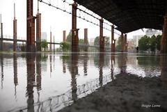 Torino 2015 (Leone Biagio) Tags: rain torino turin pioggia allaperto parcodora