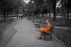 Breathe (Geoff Livingston) Tags: happybenchmonday hbm monk bench meditate path journey breathe