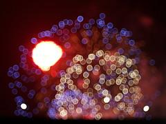 too hot (Asenath Waite) Tags: fireworks lights lighttrails bokeh abstraction abstract abstractphotography abstractbokeh adaptedlens vintagelens legacylens meyeroptikgorlitzdomiplan50mmf28 olympusep3 microfourthirds manualfocus manualfocuslens night nightphotography colors coloredlights