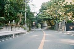 -18 (UME2nd) Tags: fujifilm japan natura classica