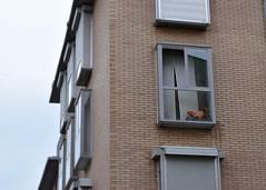 Lost childhood (AG-Wolf) Tags: window childhood kids toy ventana nios infancia