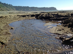 BigLagoonBeach070412d (homeboy63) Tags: summer 2012 humboldt beach patrickspointstatepark