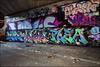Various... (Alex Ellison) Tags: northlondon mhb urban graffiti graff halloffame hof ctr cityrollers sone alma plea virus flem boobs