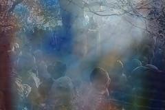 enlightened words (Elly Snel) Tags: preacher crowd layered menigte spreker enlightenend gelaagd verlichtend groepsgedachte groupthoughts