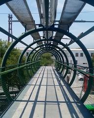 (natvega) Tags: 1pointperspective perspectiva puente tunel aros circulos cilindros fundidora arbol camino monterrey mexico nuevoleon