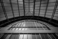 The Wintergardens, Auckland (hello_mrbaker) Tags: winter gardens auckland day trip glass house greenhouse architecture history garden flowers structure metal work perspective black white bw prime nikon d5300 sigma 1020mm