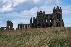 abbey (pamelaadam) Tags: geolat54488319 geolon0607927 whitby engerlandshire building kirk whitbyabbey faith spirituality holiday2016 summer august 2016 digital fotolog thebiggestgroup