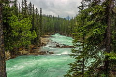 kicking horse river in yoho NP - BC, canada 4 (Russell Scott Images) Tags: canada britishcolumbia bc canadianrockymountains yohonationalpark kickinghorseriver