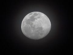 DSC05618 (familiapratta) Tags: sony dschx100v hx100v iso100 natureza lua cu nature moon sky