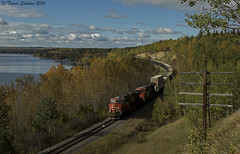 Fall is Coming..... (Trevor Sokolan) Tags: wabamun lake edsonsub canadian canada cn cnr canadiannational curve fall autumn leaf leaves scenic railway railroad railfan rail railfanning trains train trainspotting tracks alberta ab ge generalelectric es44ac diesel locomotive sulphur pole telegraph